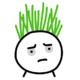 硬气韭菜Leek